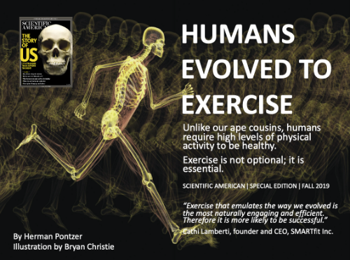 Scientific American - Humans Evolved to Exercise